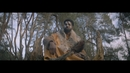 Fire In My Soul (Official Video) feat.Shungudzo/Oliver Heldens