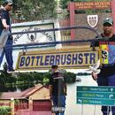 BottlebrushStr/DJ Speedsta