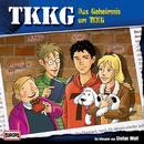 Das Geheimnis um TKKG (Neuaufnahme)/TKKG