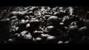 An Apathetic Grave (lyric video)/Vallenfyre