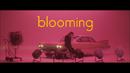blooming/安田 レイ