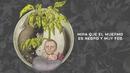 El Muermo (Lyric Video)/Niño de Elche