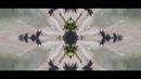Stand Still (Official Video)/ZAYN