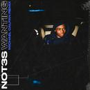 Wanting (Michael Calfan Remix)/Not3s