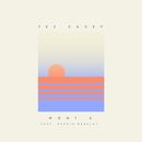 Won't U feat.Brodie Barclay/Tez Cadey