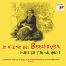 Je n'aime pas Beethoven, mais ça j'aime bien !/Various Artists