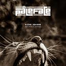 Käsi iskee feat.DJ Massimo/Paleface