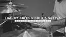 Dos Edificios Dorados (Official Video) feat.Eruca Sativa/David Lebón
