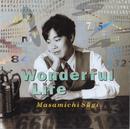 Wonderful Life/杉 真理