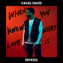 When You Know What Love Is (Remixes)/Craig David