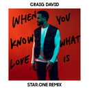 When You Know What Love Is (Star.One Remix)/Craig David