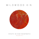 Beauty in Your Brokenness (Acoustic)/Wildwood Kin