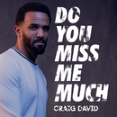 Do You Miss Me Much/Craig David