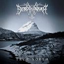 True North/Borknagar