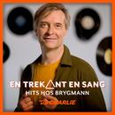 En trekant en sang/Martin Brygmann