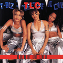 Diggin' On You (Remixes)/TLC