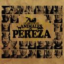 Los Amigos De Los Animales/Pereza