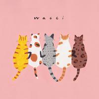 フレンズ/wacci
