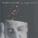The Hole in Your Roof/Augie March