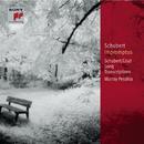 Schubert: Impromptus, D. 899 (Op. 90) & D. 935 (Op. 142); Schubert-Liszt: Song Transcriptions [Classic Library]/Murray Perahia