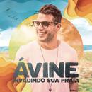 Invadindo a Sua Praia/Avine Vinny