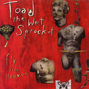 Fly From Heaven EP/Toad The Wet Sprocket
