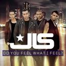Do You Feel What I Feel?/JLS