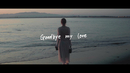 Goodbye My Love/Anly