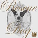 Rescue Dog/Train