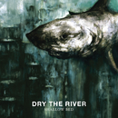 Shallow Bed (Deluxe Version)/Dry the River