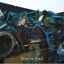 Not the End/安田 レイ