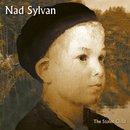 The Stolen Child/Nad Sylvan