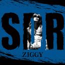 SWING, DRIVE, ROCK'N'ROLL/ZIGGY