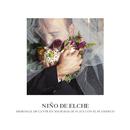 Memorial de Cante en Mis Bodas de Plata con el Flamenco/Niño de Elche