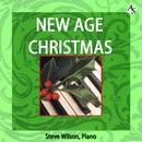 ニュー・エイジ・クリスマス/スティーヴ・ウィルソン