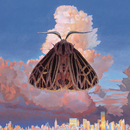 Moth/Chairlift