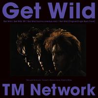 ハイレゾ/Get Wild/TM NETWORK
