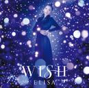 WISH/ELISA connect EFP