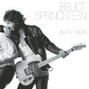 Born To Run/Bruce Springsteen