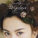 Beautiful Surprise/OneRoom/wyolica