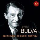 Piano Sonata No. 24 in F-Sharp Major, Op. 78/II. Allegro vivace/Josef Bulva