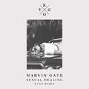 Sexual Healing (Kygo Remix)/Marvin Gaye