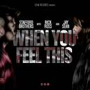 When You Feel This( feat.Jay Sean & Rick Ross)/Stafford Brothers