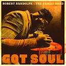 Love Do What It Do( feat.Darius Rucker)/Robert Randolph & The Family Band