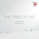 The Tree of Life/Daniel Taylor