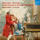 Mozart & Haydn: Concertos & Divertimentos/Ensemble Castor