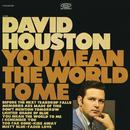 You Mean the World to Me/David Houston