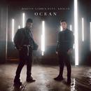Ocean( feat.Khalid)/Martin Garrix
