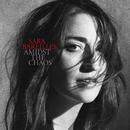 Amidst the Chaos/Sara Bareilles