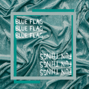 Blue Flag / Fun Things/Jesper Jenset